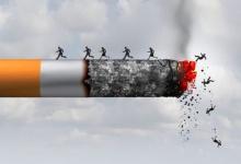 Табак: только вред